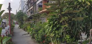 Spaziergang durch Bangkok